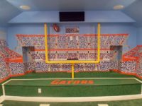 Football room with field goal post